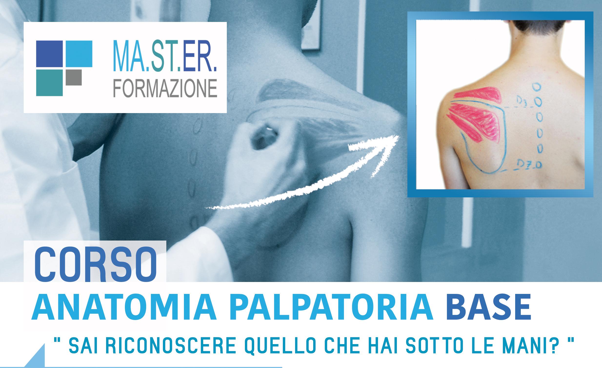anatomia_palpatoria_fronte (1)